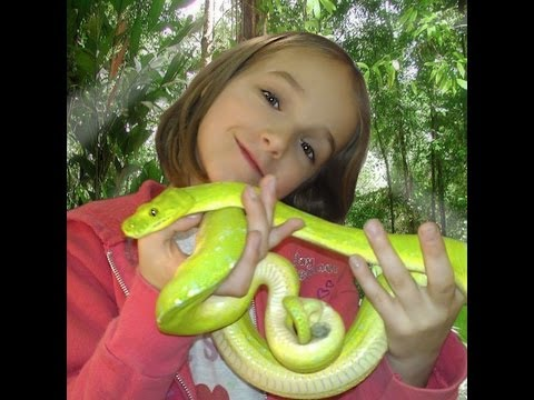 Little Girl Loves Snakes! SnakeBytesTV