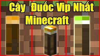 Nếu Noob Sở Hữu Cây Đuốc Vip Nhất Trong Minecraft ** Noob Người Con Tốt Bụng