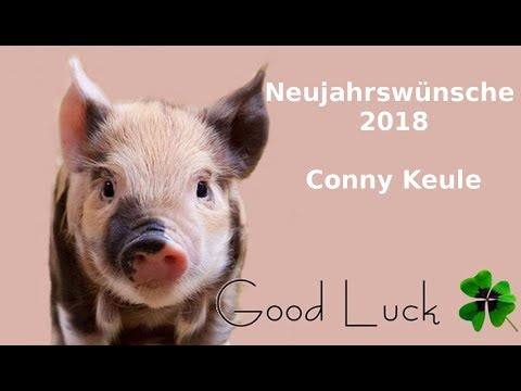 Neujahrswünsche 2018 Conny Keule