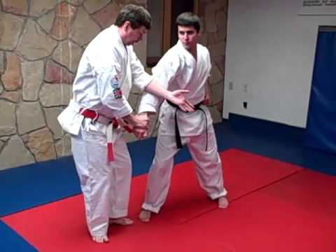 Isshin Ryu Seisan Kata Advanced Bunkai  3
