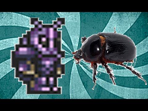 Броня жука как сделать 464