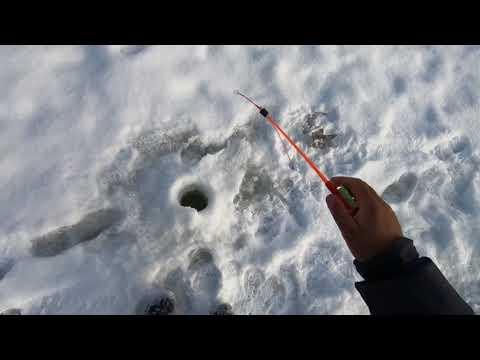Рыбалка в Эвенкии.Рыбалка радует..всё будет..(1..