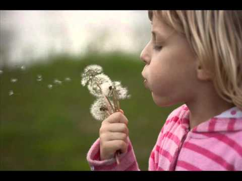 SWEET TEA & DANDELIONS.wmv