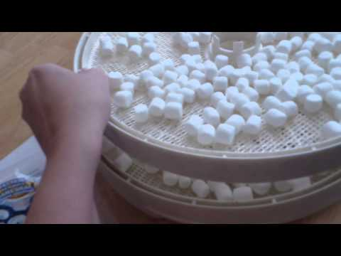 Dehydrating marshmallows part 1