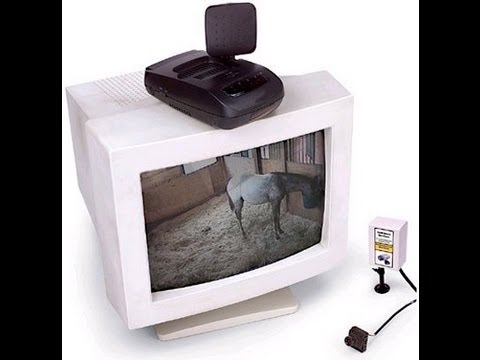Use a Barn Camera to watch your horse