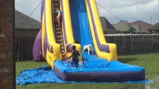 An adorable Labrador dog overtakes children to slip down water slide .