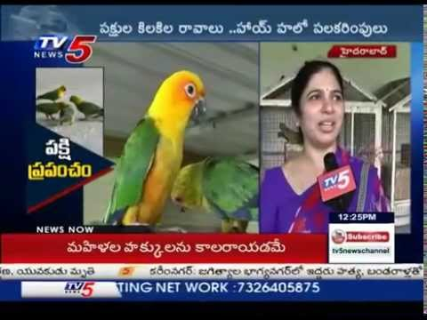 Beauty Of Birds | Mini Zoo Started By a Family In Hyderabad : TV5 News Photo Image Pic