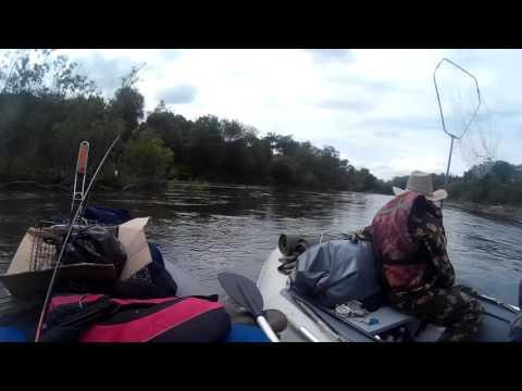 рыбалка на амуре видео сетями