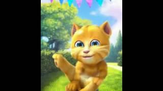 Gatinho engraçado soltando pum