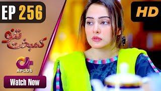 Kambakht Tanno - Episode 256   Aplus ᴴᴰ Dramas   Tanvir Jamal, Sadaf Ashaan   Pakistani Drama