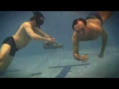 Новое подводное ружьё
