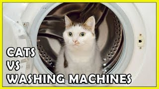 Funny Cats vs Washing Machines Compilation 2018 NEW HD  - FunnyCat