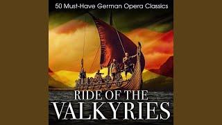 The Magic Flute K 620 Act Ii 34 Der Hölle Rache 34 The Queen Of The Night 39 S Aria