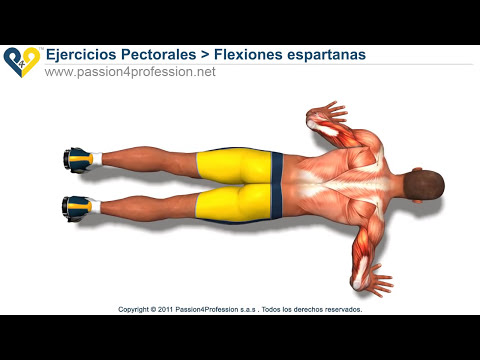 Flexiones espartanas (routina 300)