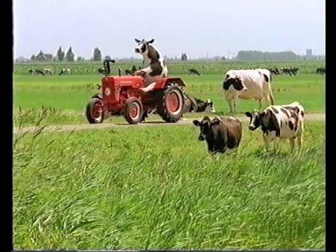 Boerenland 1999 (Melkunie)