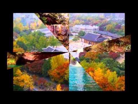 Tourism in South Korea