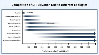 Interpretation of LFTs (Liver Function Tests)