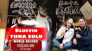 The most expensive Tuna | 333.6 million yen SOLD | JAPAN | Lhegie