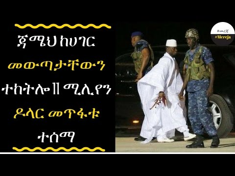 Ethiopia: The Gambia 'missing millions' after Jammeh flies into exile