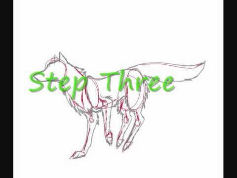 Wolf Run cycle Tutorial. (newer than my old runcycle)