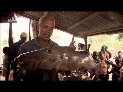 Monstruos de Río - El asesino del Congo Parte 1