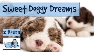 2.5 HOURS of Sweet Doggy Dreams Music. Send your Dog to Sleep with this Music!