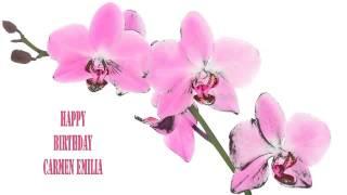 Carmen Emilia   Flowers & Flores - Happy Birthday