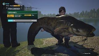 Dovetail Games Fishing Monster Catfish 42kg