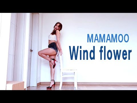 MAMAMOO (마마무) Wind flower Dance cover Waveya