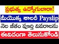 How to download PAYSLIPS in GOVT Employees | How to download cfms employees payslips
