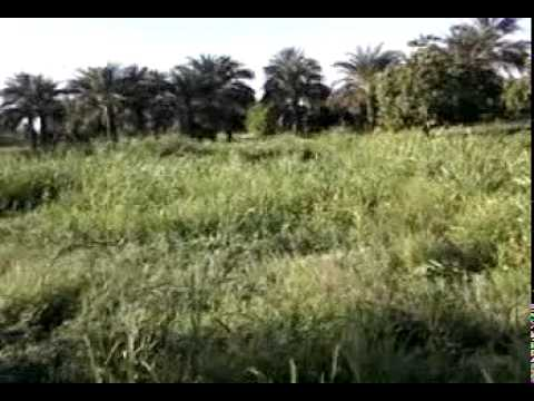 Sudan Travel Part 4