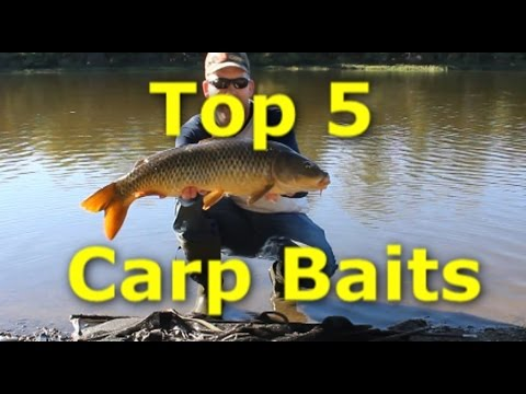 5 Best Carp Baits - How to catch carp with 5 different baits.