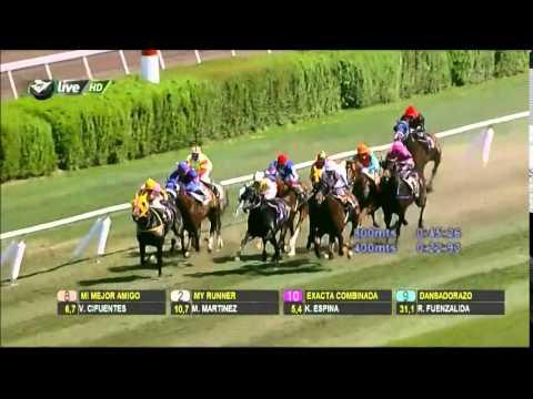 Vidéo de la course PMU PREMIO JORGINHO