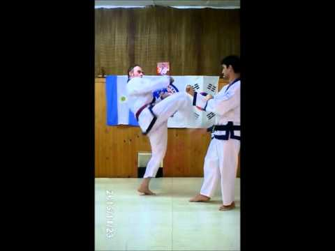KICKING COMBINATIONS TRAINING TANG SOO DO MI GUK KWAN Image 1