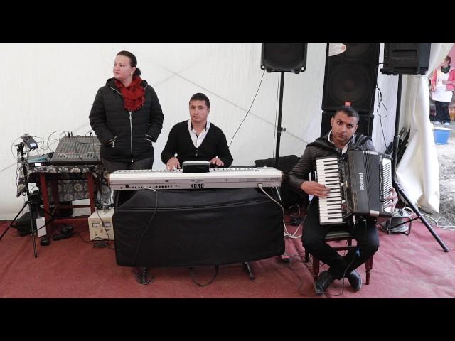 FIFI sI STRUGUREL de la Celaru | Instrumental  Acordeon | Colaj SARBA LIVE