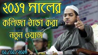Hafizur Rahman Siddiki Bangla Waz 2017 | Bangla New Waz 2017 Kolija Danda Kora New Waz