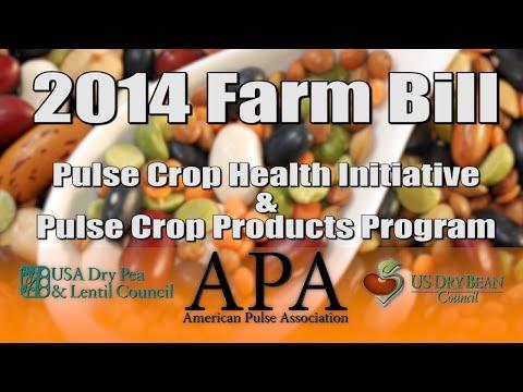 American Pulse Association and the 2014 Farm Bill