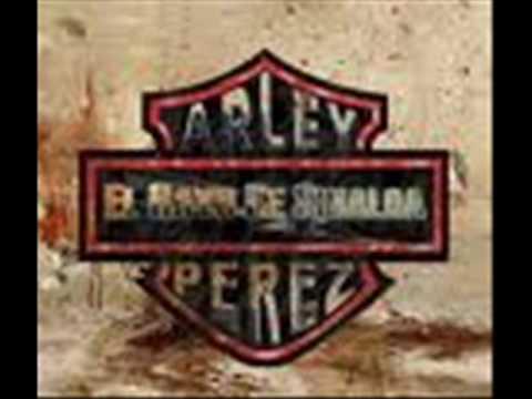 MINI - LIC .ARLEY PEREZ -EL CINE.wmv
