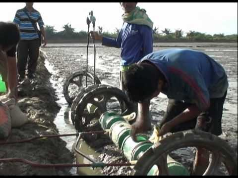 Penggunaan Alat Tanam Benih Padi Tebar Langsung (Direct seeding of rice using a drumseeder)