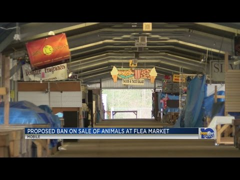 Ban on sale of animals at Mobile Flea Market proposed