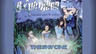 Watch Bwitched The Shy One video