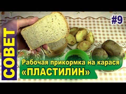 хлеб для прикормки карпа