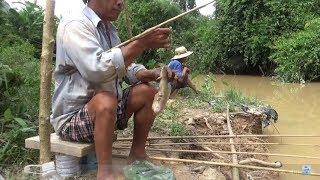 Recreational fishing - fishing - fishing killer