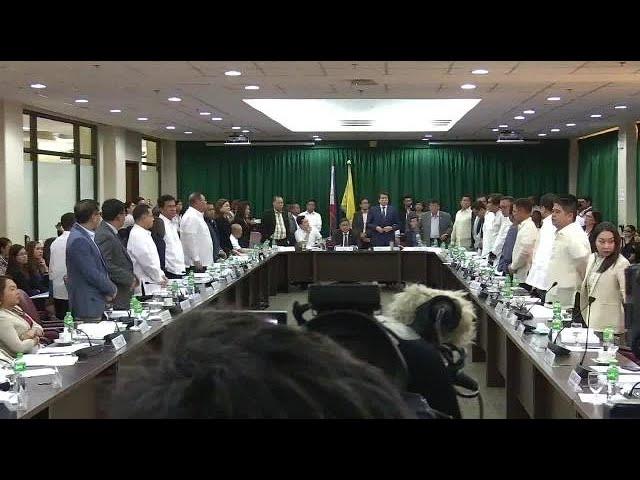 Gadon impeach complaint vs Sereno sufficient in form, substance—House body