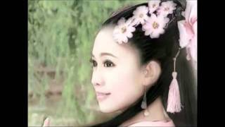 A  Beautiful Chinese Melody Music- A Spray of Plum Blossoms !