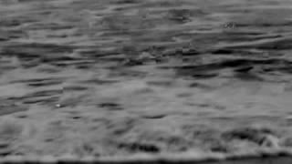 Watch Sweet Billy Pilgrim Longshore Drift video