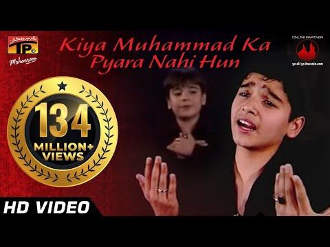 Kiya Muhammad Ka Pyara Nahi Hun, Ali Shanawar & Ali Jee 2013 14 video