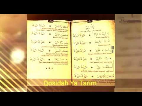 Ya Tarim Gus Alief feat Habib Bagir Baraqbah