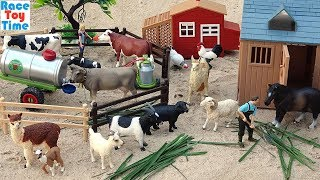 Cattle Transport Truck Toy Farm plus Fun Toy Animals For Kids
