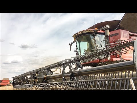 Harvest 2018 - ROTE  GIGANTEN // 3x Case Mähdrescher 6x Case Traktoren // Press Technik-Krone